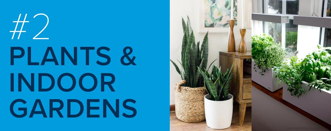 #2: Plants & Indoor Gardens
